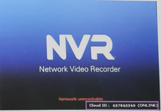 check if nvr is online